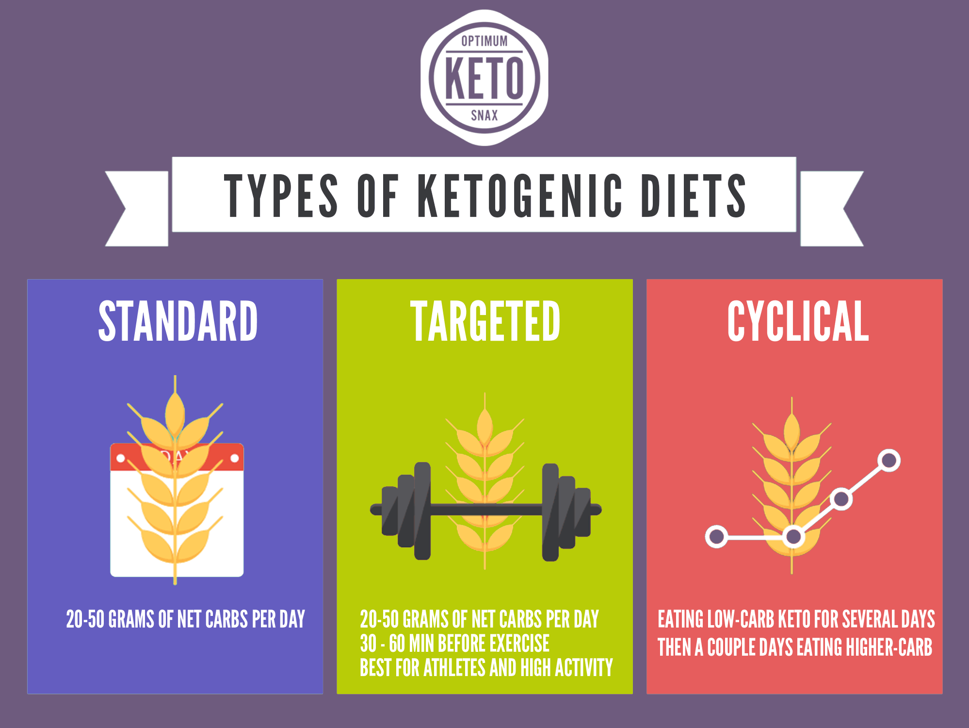 Types-of-Ketogenic-Diets.png