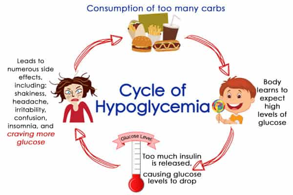 The-Cycle-of-Hypoglycemia